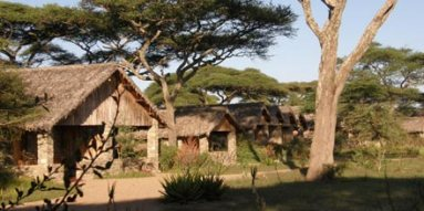 ndutu-lodge-2