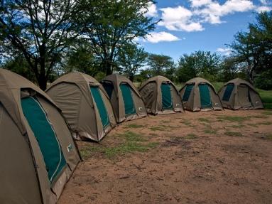 tents_row